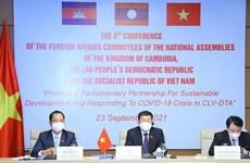 CLV : les Commissions des affaires étrangères des trois AN tiennent leur 8e conférence