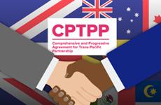 Les États membres du CPTPP discutent de l'adhésion du Royaume-Uni