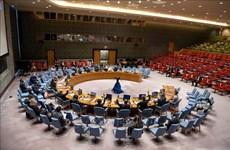 ONU : le Vietnam apprécie l'exécution de la Convention sur l'interdiction des armes chimiques