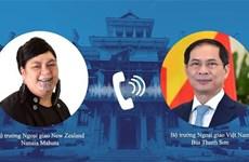 Vietnam-Nouvelle Zélande : conversation téléphonique entre les deux ministres des AE