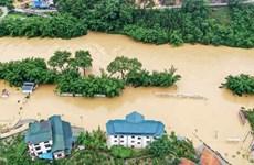 Le Vietnam oeuvre avec l'ASEAN pour relever le défi des catastrophes
