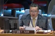 Le Vietnam souligne l'importance du dialogue pacifique au Kosovo