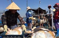 Le secteur de la pêche prend le large pour développer l'économie maritime