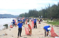 Dans l'estuaire de Sa Can, les bénévoles font le grand ménage