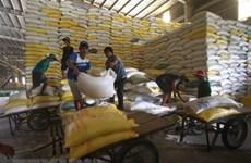 Le Vietnam exporte 4,5 millions de tonnes de riz en huit mois