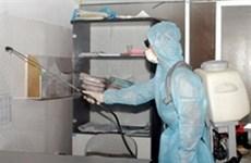 Grippe A/H1N1: 5e cas mortel au Vietnam