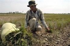 L'invasion de l'eau salée menace le delta du Mékong