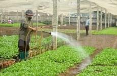 """Le prix """"Génie de l'Agriculture"""" aux meilleurs paysans"""