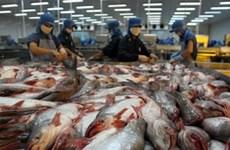 Pangasius : pas de dumping sur le marché américain