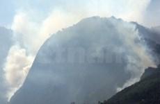 Hoang Lien Son : l'incendie a enfin été maîtrisé