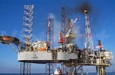 Le 1er consotium pétrolier privé voit le jour au Vietnam