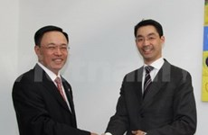 La RFA souhaite une coopération médicale avec le VN