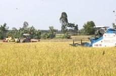 Delta du Mékong: résilience au changement climatique