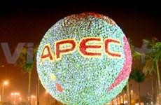 APEC : discussions sur la croissance durable