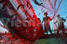 PNUD: Un photographe vietnamien décroche un premier prix