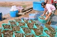 Aquaculture : 8 mld d'USD d'exportation d'ici 2015