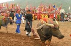 Hà Nam : ouverture de la fête de Tich Dien 2011