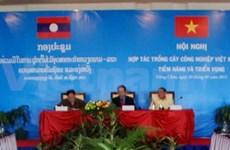 Vietnam-Laos : coopération dans la culture de plantes industrielles