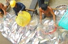 L'aquaculture, un secteur économique de pointe du Nord