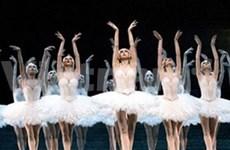 La troupe de ballet nationale d'Angleterre attendue au Vietnam