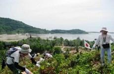 Vietnam-Japon : coopération dans le reboisement
