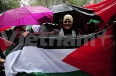 Le Vietnam soutient l'adhésion de la Palestine à l'ONU