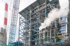 La BAD soutient le Vietnam dans la collection du carbone