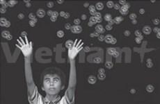 Le Vietnam remporte le concours photographique en Espagne