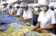 Les exportateurs de noix de cajou auront la pêche