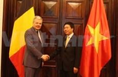 Rencontre entre les chefs de la diplomatie Vietnam-Belgique