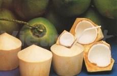 Bên Tre met l'accent sur le traitement des noix de coco