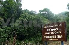 Ils tiennent à la forêt du général Vo Nguyên Giap