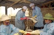 L'USAID soutient la riposte à la pandémie grippale