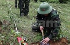 Neutralisation des explosifs : le pays redouble d'efforts