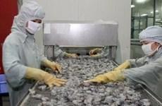 Crevettes : une hausse des exportations prévue en 2013