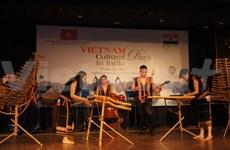 Chants et danses au diapason de l'amitié Vietnam-Inde