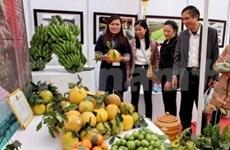Hanoi : Fête florale – Marché du Têt