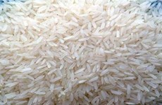 Le riz vietnamien de retour au Japon