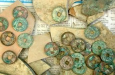 Des monnaies anciennes découvertes à Quang Binh