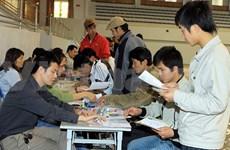 Près de 800 travailleurs vietnamiens en Libye