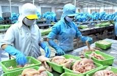 Forte hausse du pangasius vietnamien exporté au Japon