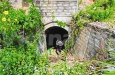 Lorsque Dà Lat cherche à percer les secrets de ses tunnels