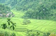 Homestay façon Thai dans la Réserve de Pù Luông