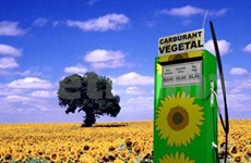 La croissance de la production agricole mondiale devrait ralentir