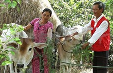 Oxfam et ActionAid soutiennent la lutte anti-pauvreté