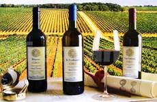 Hanoi débouchera le 4e Traditional Quality Wine Tasting