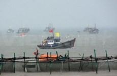 Binh Dinh : exercice d'évacuation devant un tsunami