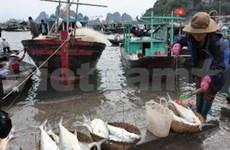 Kien Giang : développement de l'économie maritime