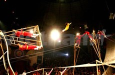 Le cirque vietnamien à l'honneur en France