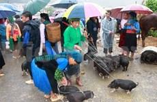Préserver l'espace culturel de la foire de Dong Van